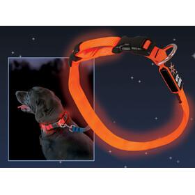 Nite Ize NiteDawg LED-Collar rot Sprzęt dla zwierząt czerwony/czarny
